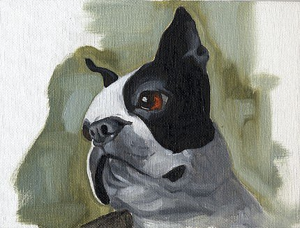Boston Terrier Oil Painting ($40)