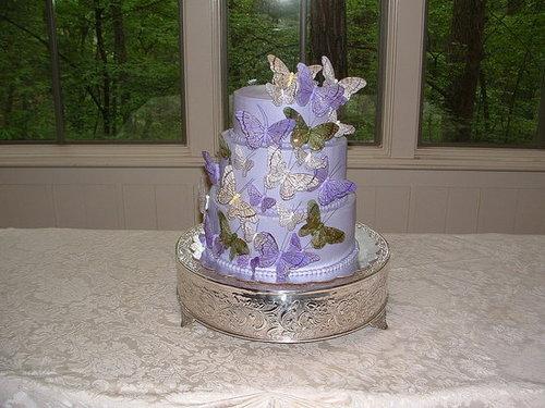 Pretty Purple and Butterflies