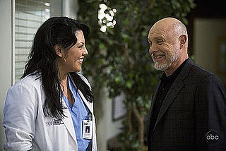 "Grey's Anatomy Recap: Season 5, Episode 20, ""Sweet Surrender"""