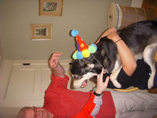 Trying to sing Happy Birthday to the pup.