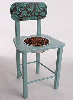 Chow Chair: Spoiled Sweet or Spoiled Rotten?