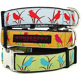New Product Alert! Wonderdog Birdie