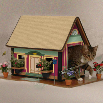 Kitty's Purrfect Playhouse: Spoiled Sweet or Spoiled Rotten?