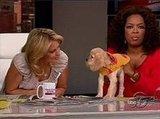 Oprah's New Pup, Sadie