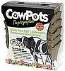 Casa Verde: CowPots