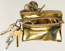 Simply Fab: American Apparel Lamé Coin Purse