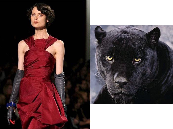 Shalom-Panther