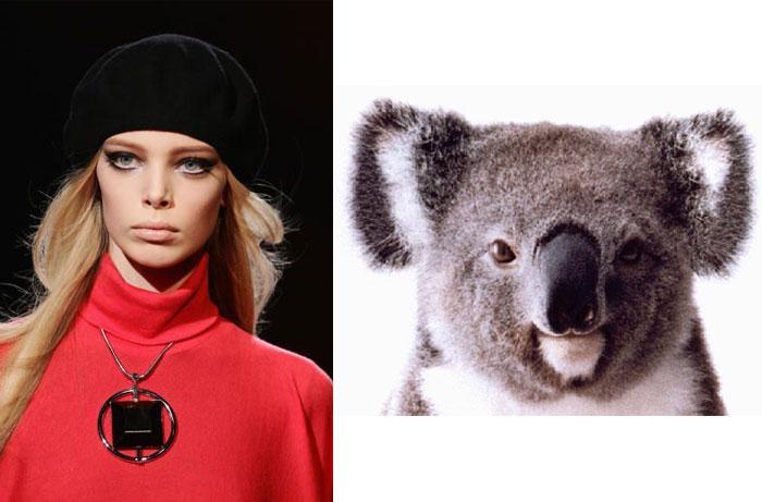 Tanya-D-Koala