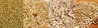 Fiber Quiz:  Grains