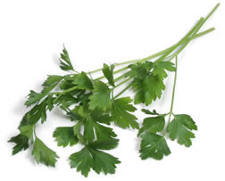 Don't Skip The Garnish: Italian Parsley Is Loaded With Good Things