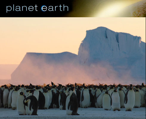 Planet Earth Miniseries: Just ... Wow
