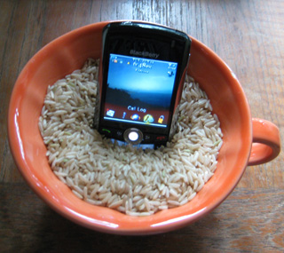 Man Drops BlackBerry In Toilet, Saves It With Rice
