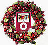 The (PRODUCT) Red iPod Nano Goes To. . .