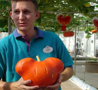 EPCOT's Pumpkins Earn Their Ears