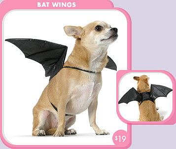 Bat Wings Dog Costume