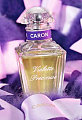 Caron&#039;s Violette Precieuse Is A Symbol of True Love