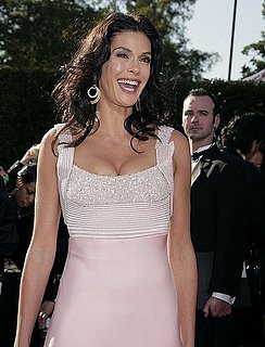 Love It or Hate It? Teri Hatcher's Emmy Awards Look