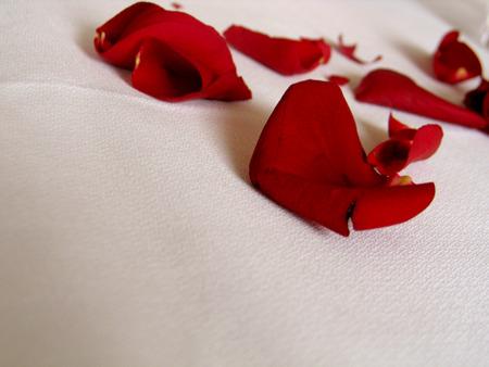 DIY Beauty: Roses