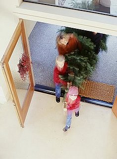 How To: Get Your Tree Home