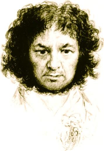 Francisco José de Goya - Painter to the Royal Court