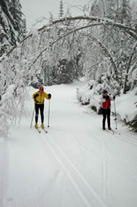 Let's Get Physical:  Cross-Country Skiing