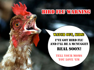 What Ever Happened to the Bird Flu?